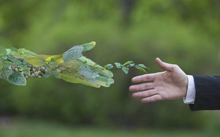 Se développer - Innovation Environnement